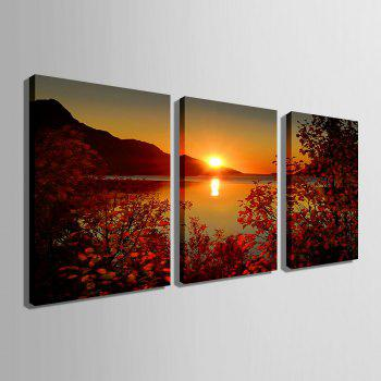 Yc Special Design Frameless Paintings The Setting Sun of 2 - ROSE RED 9 X 13 INCH (24CM X 34CM)