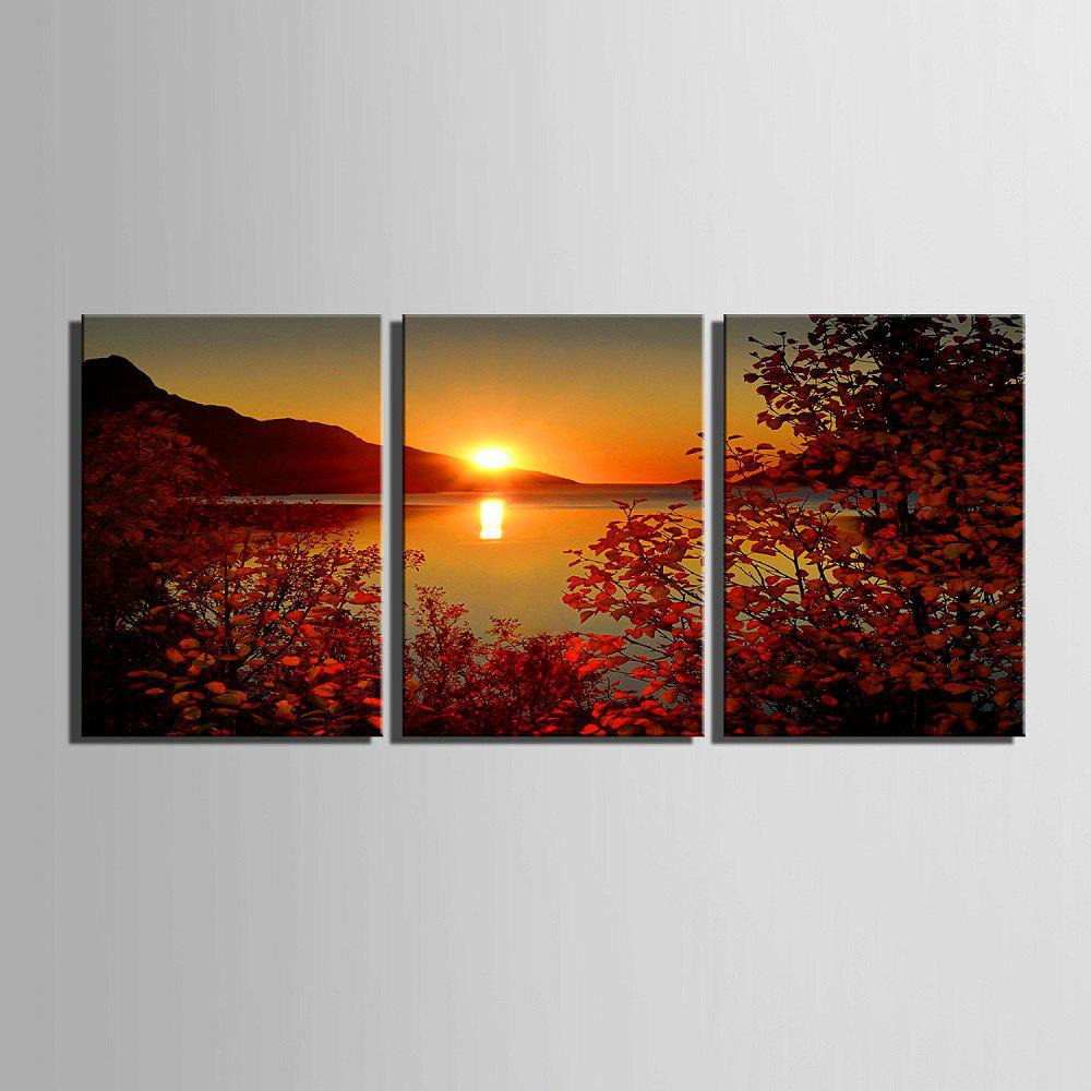 Yc Special Design Frameless Paintings The Setting Sun of 2 - ROSE RED 20 X 14 INCH (50CM X 35CM)