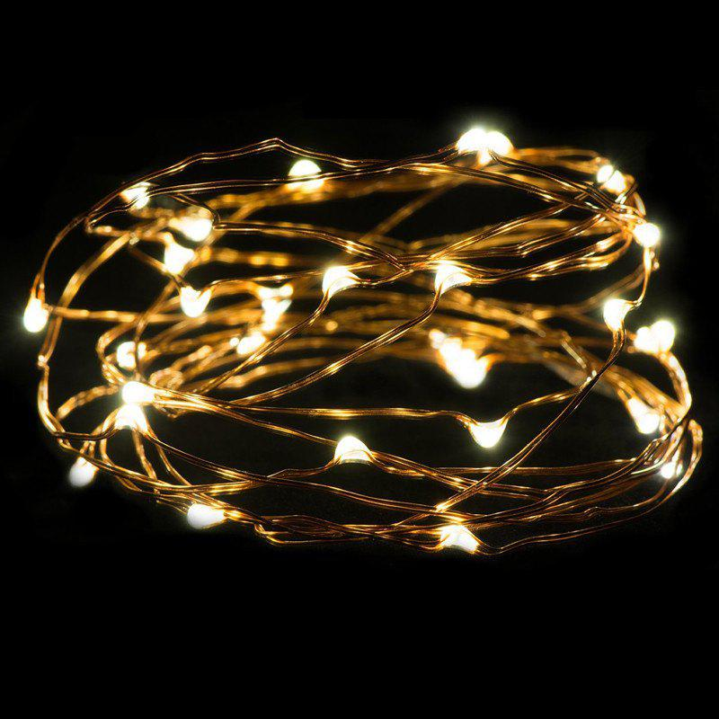 AY - hq217 2M 20 LED Copper Wire Light for Christmas Tree Decoration - WARM WHITE LIGHT