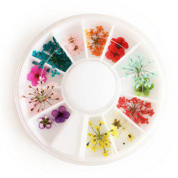 1 Box Mixed Style Natural Dried Flower Nail Art Decoration - COLORMIX COLORMIX