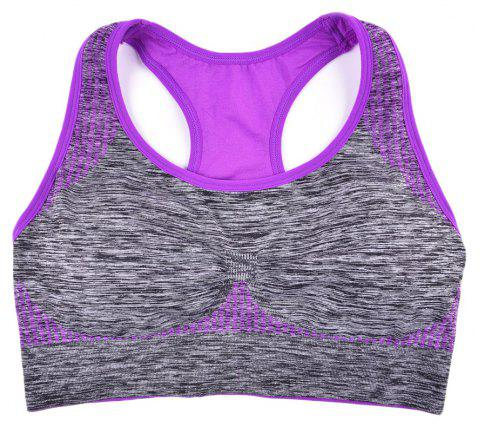 2017 Fashion Women Fitness Seamless Sports Bra Brrathable Qiuck Dry Fabric - PURLPE L