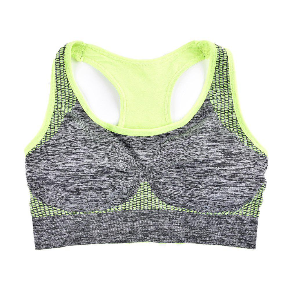 2017 Fashion Women Fitness Seamless Sports Bra Brrathable Qiuck Dry Fabric - GREEN T S