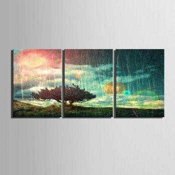 Special Design Frameless Paintings 3PCS - PINK / GREEN 16 X 11 INCH (40CM X 28CM)