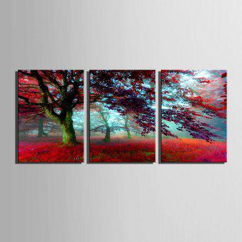 Special Design Frameless Paintings Red maple leaves 3PCS - RED RED