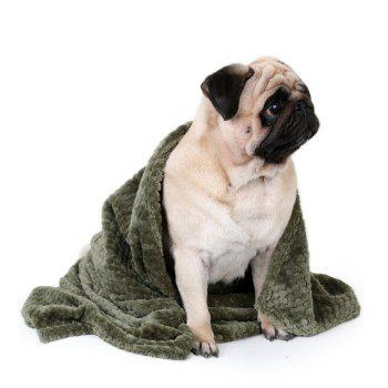 Soft Warm Durable for Winter Pet Blanket - GREEN