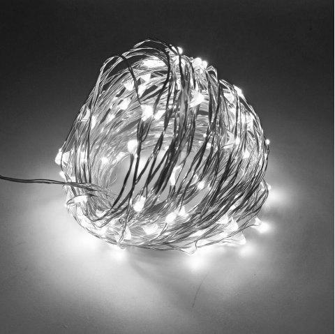 ZDM 10M 5W 100LEDs Waterproof String Light with RF 13Key Controller for Outdoor Festival Christmas Party Decoration - COLD WHITE
