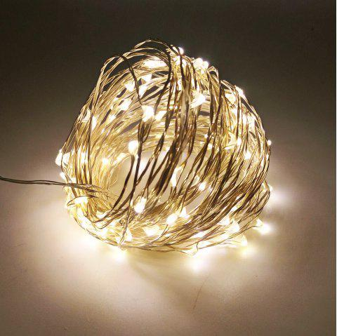 ZDM 10M 5W 100LEDs Waterproof String Light with RF 13Key Controller for Outdoor Festival Christmas Party Decoration - WARM WHITE
