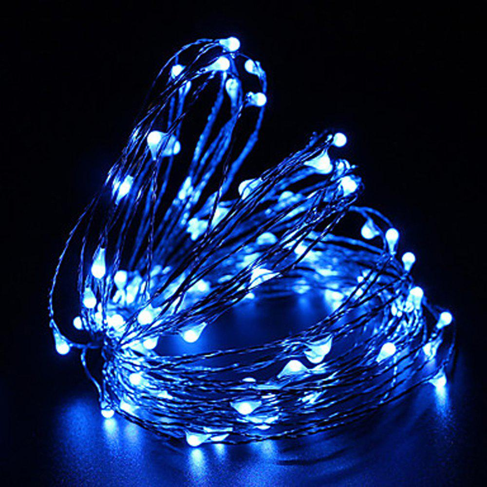 ZDM 10M 5W 100LEDs Waterproof String Light with RF 13Key Controller for Outdoor Festival Christmas Party Decoration - BLUE
