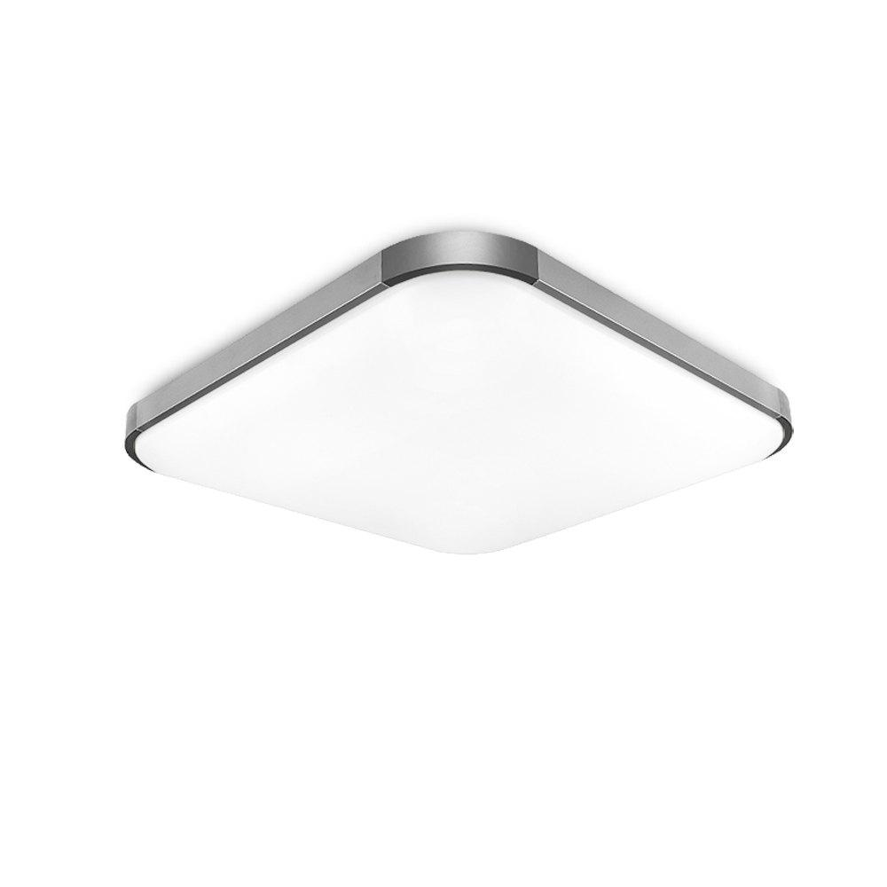 I501 -50W - WJ Promise Dimmable Ceiling Light AC 220V - SILVER