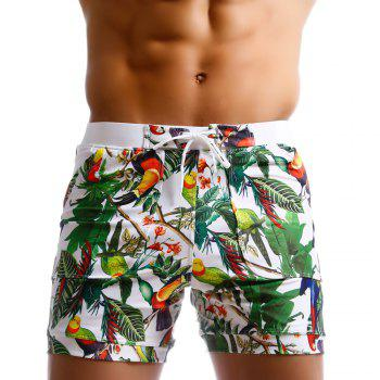 Taddlee Men Swimwear Brazilian Cut Swimsutis Man Sexy Swimming Boxers Surfing Board Beach Shorts Trunks Low Waist