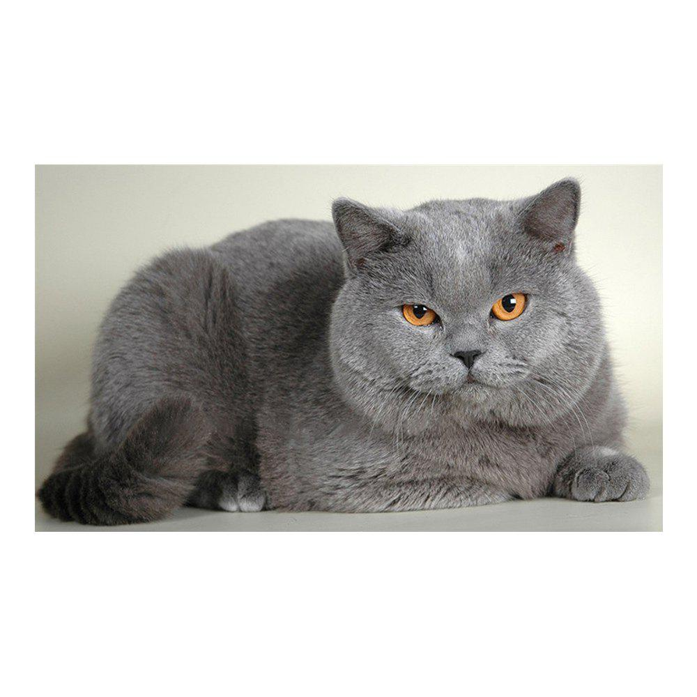 Naiyue 7191 Big Fat Cat Print Draw Diamond Drawing - GRAY