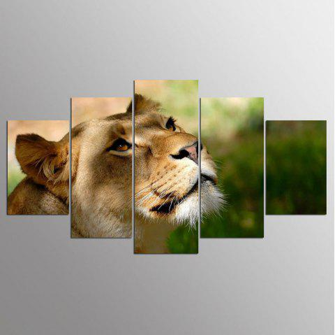 YSDAFEN 2017 Time Limited Lion Painting on Canvas Bedroom 5 Pcs/Set Decoration Picture Wall Art - COLORMIX 30X40CMX2+30X60CMX2+30X80CMX1(12X16INCHX2+12X24INC