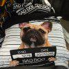 New Arrivals Cartoon Bedding Set for Kids 3D Animal Bed Sheet Queen Size Cute Bulldog Print Duvet Cover Home Bedclothes - BLACK / GOLDEN DOUBLE