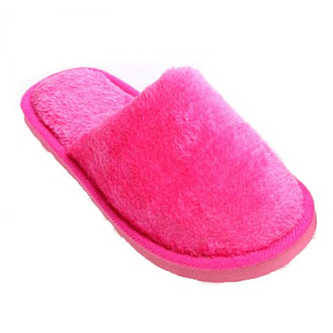 The New Home-Color Lovers Cotton Slippers - ROSE RED 38