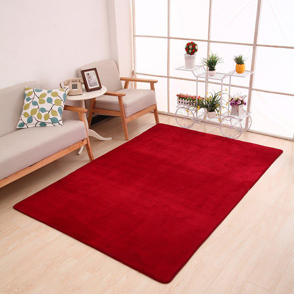 Doormat Modern Style Solid Water Proof Carpet4 - BURGUNDY 80X120CM