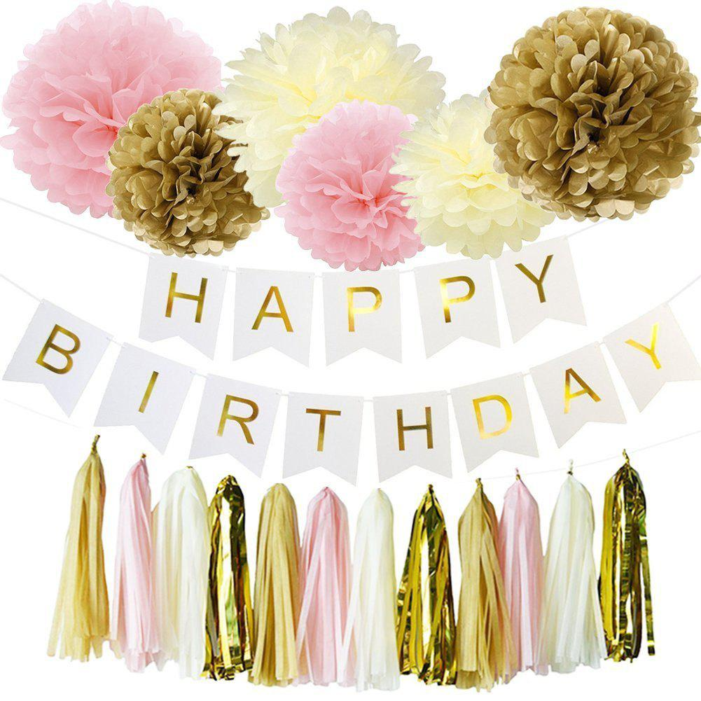 2018 eastern hope 19pcs happy birthday decorations banner hanging eastern hope 19pcs happy birthday decorations banner hanging tissue paper pom poms paper flowers rose hanging mightylinksfo Choice Image