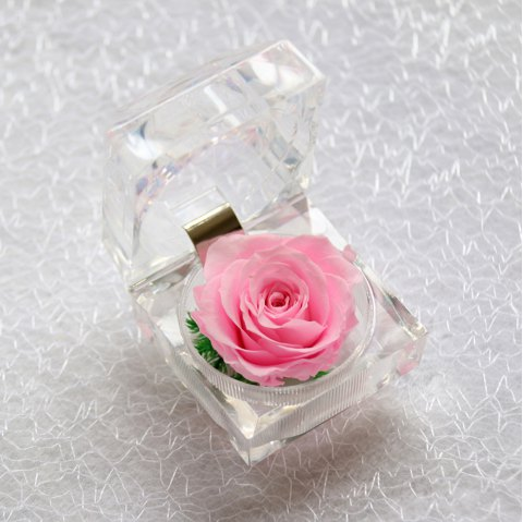 Handmade Preserved Fresh Rose Upscale Immortal Flowers Gifts for Mother Day Valentine Day Wedding - PINK