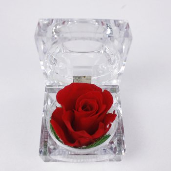 Handmade Preserved Fresh Rose Upscale Immortal Flowers Gifts for Mother Day Valentine Day Wedding - RED