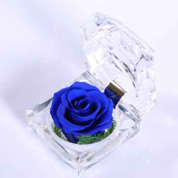 Handmade Preserved Fresh Rose Upscale Immortal Flowers Gifts for Mother Day Valentine Day Wedding - BLUE