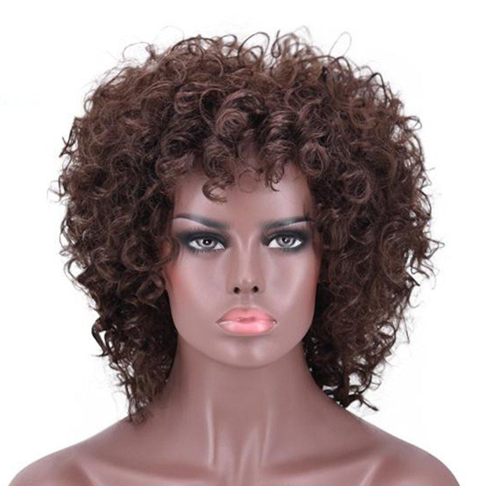 New Fashion Women Synthetic Short Hair Curly Fluffy Enchanting Retro Style Wigs - BROWN