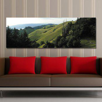 DYC 10560 Photography Alpine Landscape Print Art - GREEN 30 X 90CM