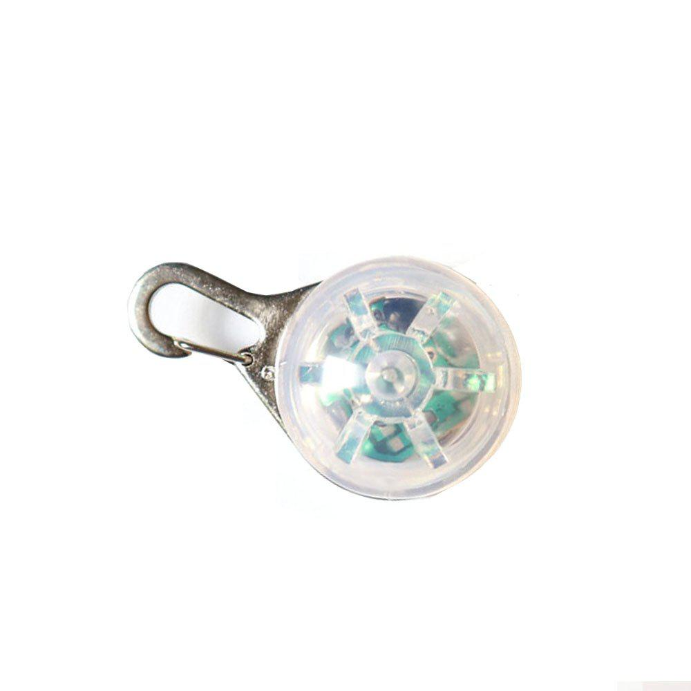 Small Pet Glowing Pendant - COLOUR