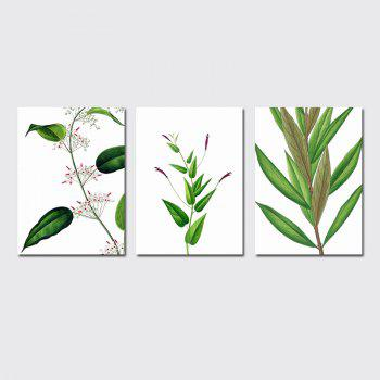 QiaoJiaHuaYuan No Frame Canvas Living Room Sofa Background Decoration Hangs a Small Fresh Plant Leaf - COLORMIX