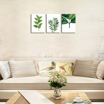 QiaoJiaHuaYuan No Frame Canvas Three Pieces of the Living Room Bedroom Background Decoration Hanging Paint plant Clear n -  COLORMIX