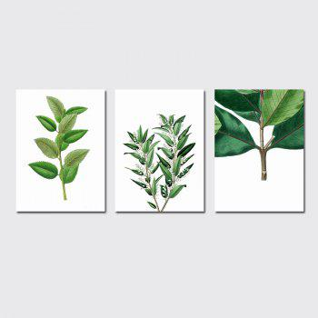 QiaoJiaHuaYuan No Frame Canvas Three Pieces of the Living Room Bedroom Background Decoration Hanging Paint plant Clear n - COLORMIX COLORMIX