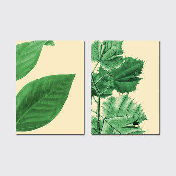 QiaoJiaHuaYuan The Frame of the Frame of Unframed Canvas is Decorated With Small and Fresh Plant Leaves - COLORMIX COLORMIX