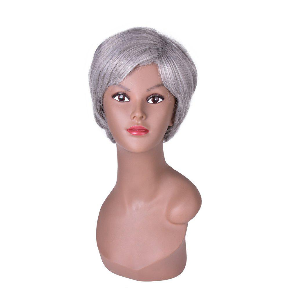 Hairyougo 2098 6 inch Short Straight Synthetic Wig Silver Grey Color Cosplay Party High Temperature Fiber Hair - GRAY
