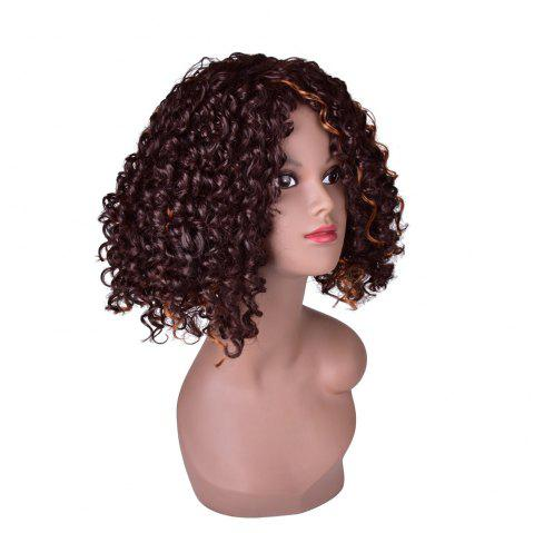 Hairyougo 0444 13 inch Afro Kinky Curly Medium Length High Temperature Fiber Wig - BROWN / GOLDEN 13INCH