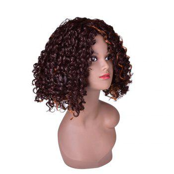 Hairyougo 0444 13 inch Afro Kinky Curly Medium Length High Temperature Fiber Wig - BROWN + GOLDEN BROWN / GOLDEN