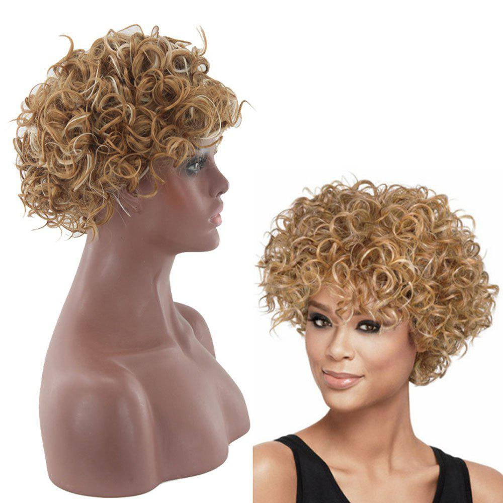 Lady Small Volume Golden Explosion Head Short Hair Wig - GOLDEN