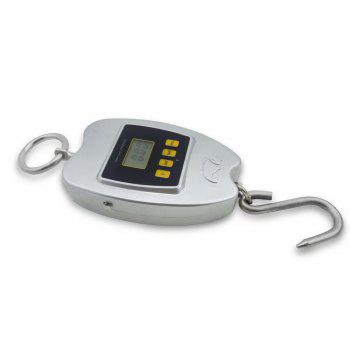 NS-H3 Tape Measure Hook Fishing Scales - SILVER