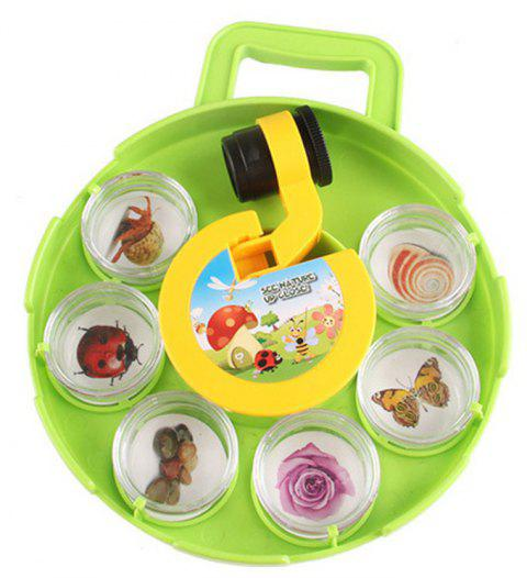 Vision Microscope Insect Plant Viewer Child Educational Toys Set - GREEN