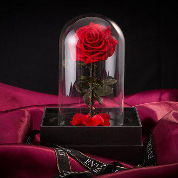 Flowers Glass Birthday Gift Rose on Valentine Day Christmas Gift Ideas - RED 13 X 14.5 X 21 CM