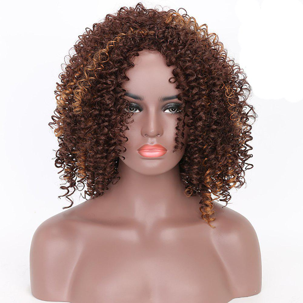 Dark Brown Mixed Blonde Heat Resistant Synthetic Fiber Afro Kinky Curly Wigs for  Women - DARK BROWN C 12INCH