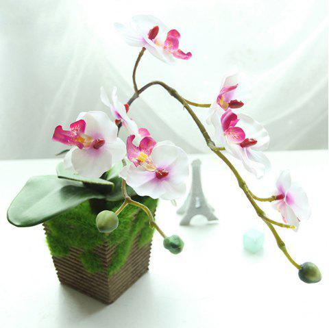 Butterfly Orchid Bonsai Artificial Flower - WHITE