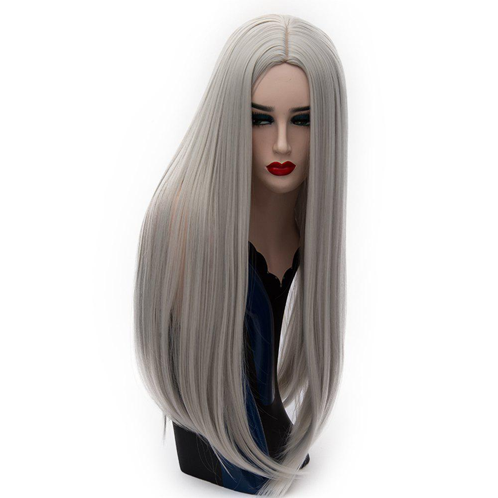 Long Straight Gray Wig High Tem for Women Cosplay Party Costume 26 inchperature - GRAY CLOUD