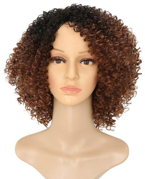 Afro Kinky Curly Hair Ombre Brown Fluffy Short Synthetic Wigs for Fashion Girls - BROWN 12INCH