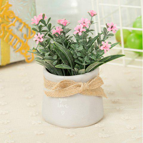 WX-C29-1679 Home Decoration Ceramic Decorative Small Flower Pot - PINK