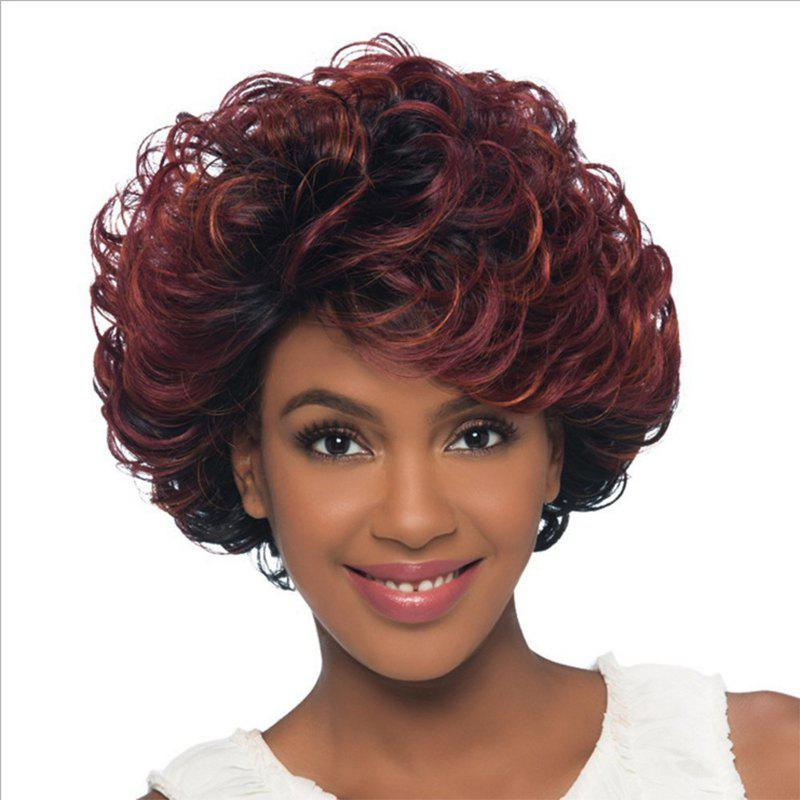 Wine Red Gradient Fluffy Ripple Hair Wig - FIREBRICK 14INCH