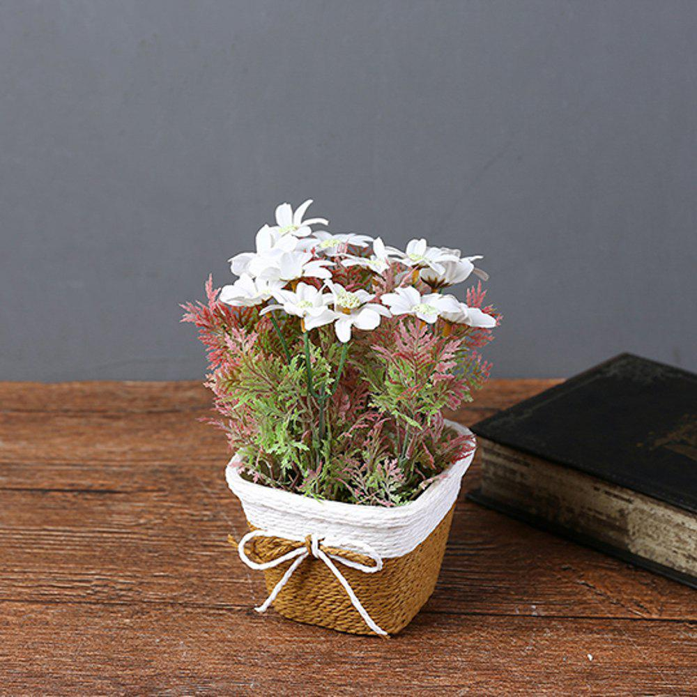 WX-C32 Rope Woven Square Bowl Persian Potted Plant - WHITE