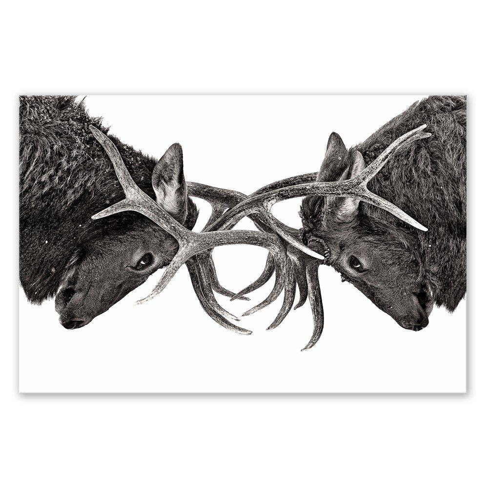 Фото W219 Deer Head Unframed Art Wall Canvas Prints for Home Decorations