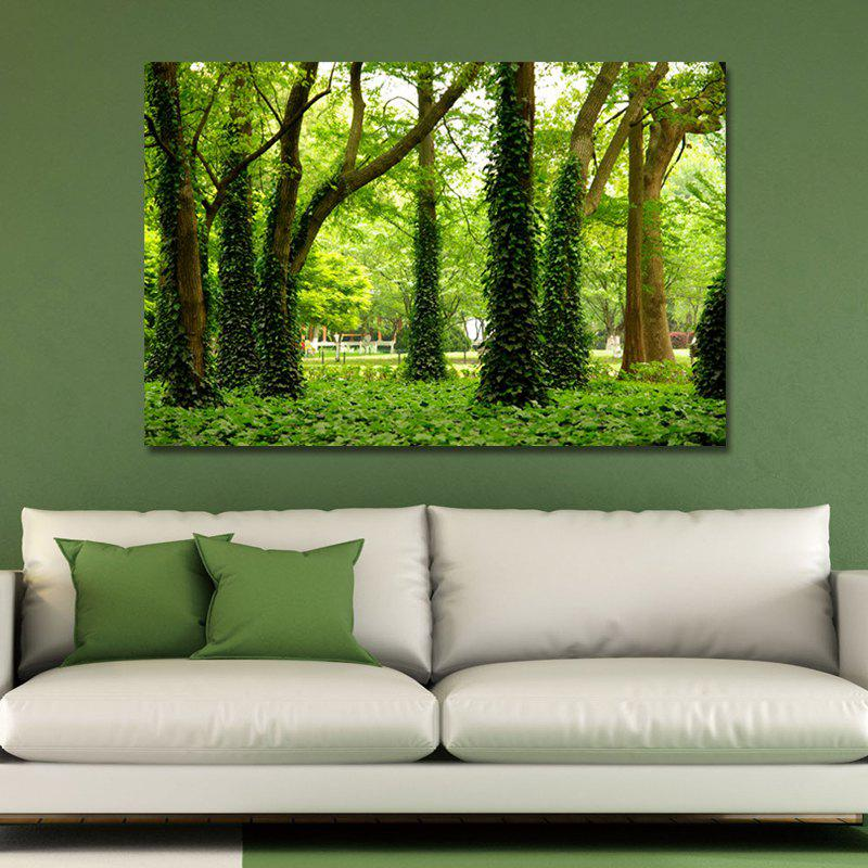 SH0077 (1) Photography The Woods in The Park Print Art
