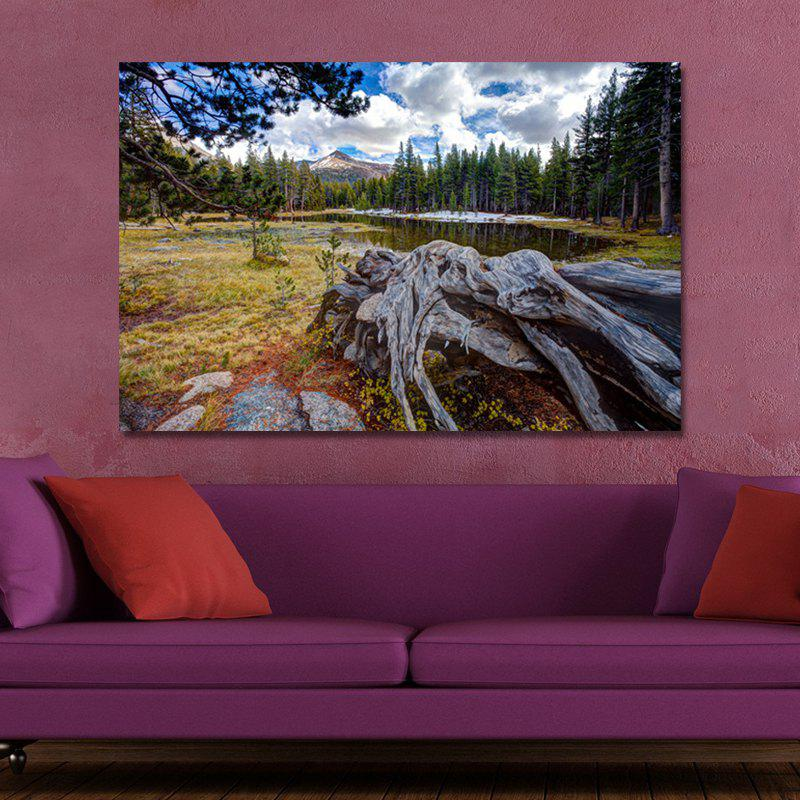 WPJXS7PR Photography Forest Landscape Print Art wpw4c5v5 photography a waterfall in the forest print art