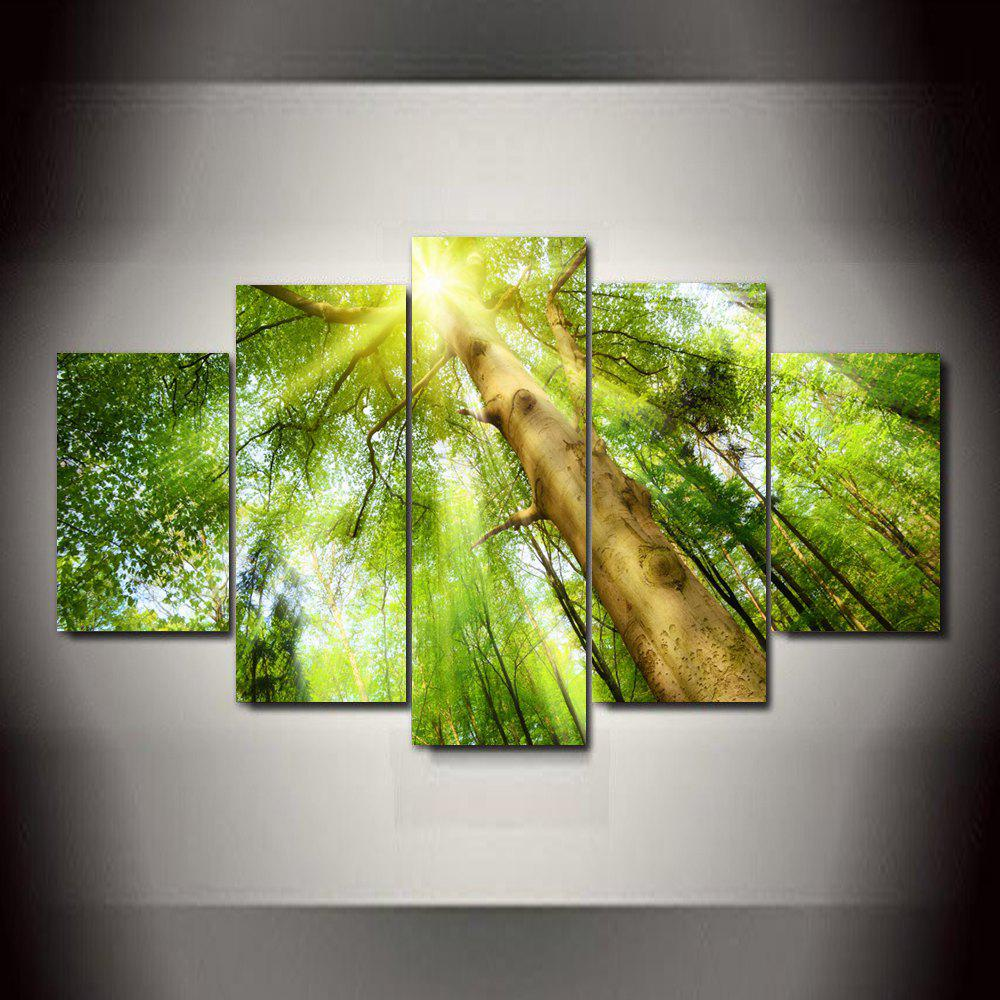 Big Tree Sunlight Frameless Printed Canvas Wall Art Paintings 5PCS world map frameless printed canvas wall art paintings 5pcs