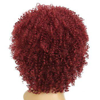 Wine Red Small Curly Fluffy Best Synthetic Short Hair Afro Wig for Fashion Girl - RED WINE 12INCH