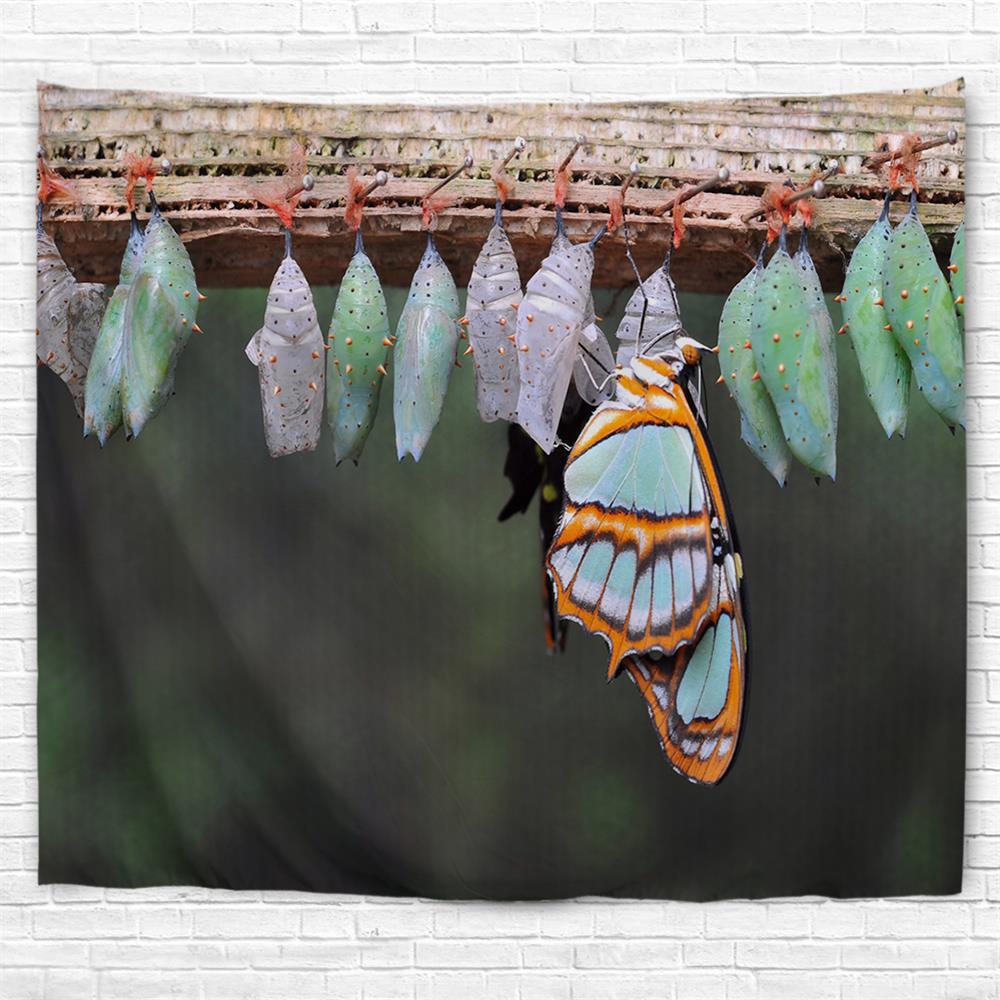 Butterfly Eggs 3D Printing Home Wall Hanging Tapestry for Decoration - multicolor A W229CMXL153CM